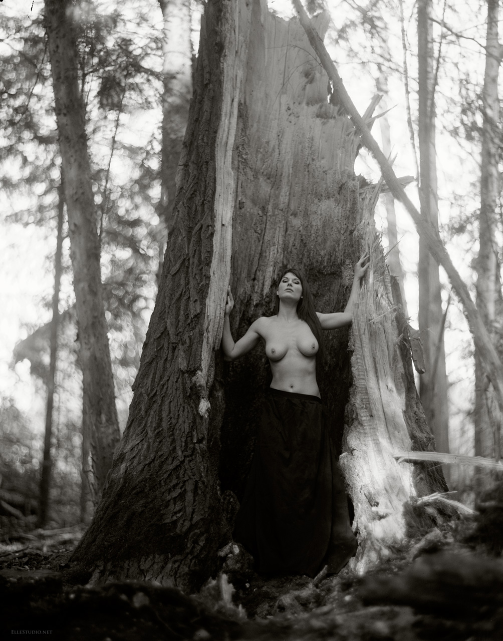 Forest analog art nude, large format photography in Neuchâtel, Switzerland, by Fabien Queloz
